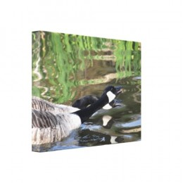 Canada geese.  These and more pictures feature on cards and gifts on zazzle. Follow the link to browse.