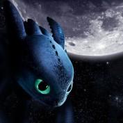 night-furry profile image