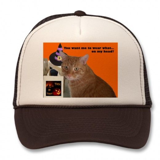 "A little Halloween magic turned this cat and table photo into a fun holiday hat gift. This photo is shared by Susan Keeping, also known as Uninvited Writer on HubPages. Caption: ""You want me to wear what...on my head?"""