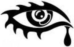 https://usercontent2.hubstatic.com/5502531_f260.jpg