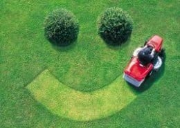 Smile!  You've done an excellent job in mowing your lawn!