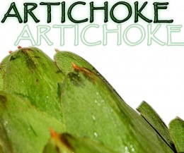 The Artichoke offers dynamic flavor, textures, and nutrition for a delightful food experience.