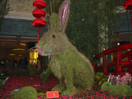 "The ""Year of the Rabbit."""