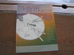 Art Book on Drawing Wild Birds A Step-By-Step Illustrated Guide to Creating Your Own Art