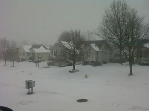 Winter 2011 in our neighborhood.