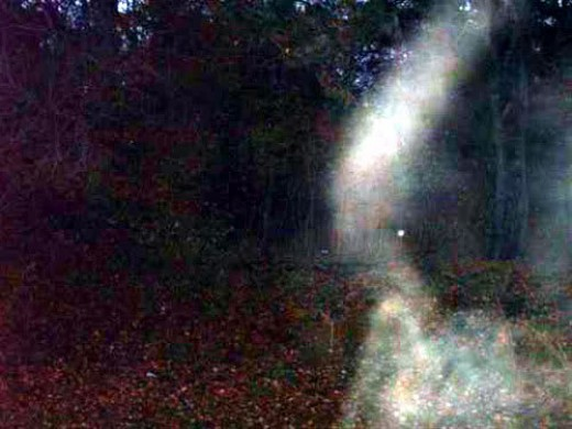 One of many ghost pictures taken at Gallows Hill