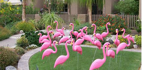 "Flamingo yard decorations, usually accompanied by a sign that says ""you've been flocked!"""