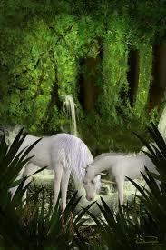 Unicorn in the woods