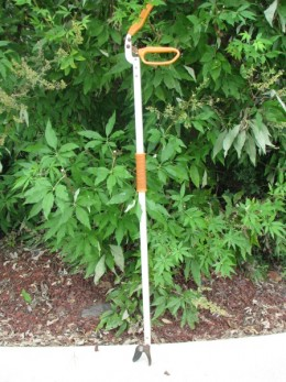 Long handle pruner used to snip old flower buds and trim bushes without bending over.