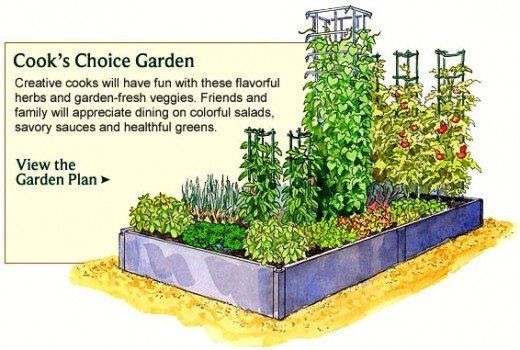 Vegetable garden planner layout design plans for small for Small vegetable garden designs