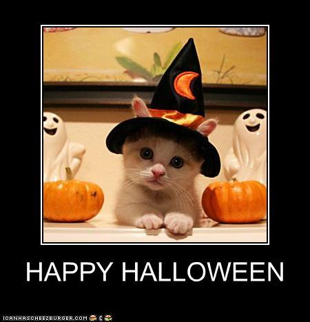 Kitties make the cutest witches! :)