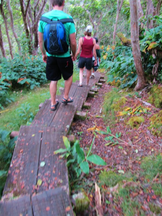 one of the most strenuous parts of the trail is the stairs