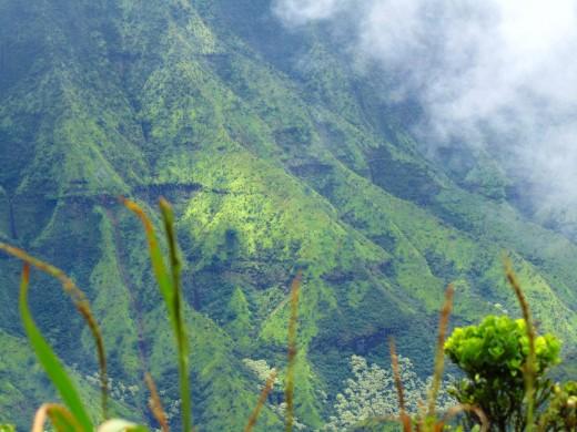 verdant mountainsides