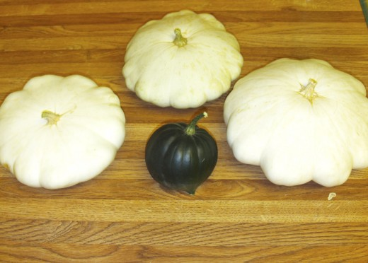 Three patty pan squash surrounding an acorn squash.