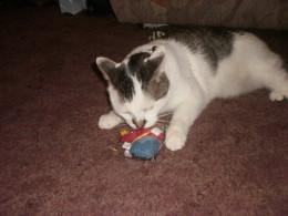 Twiggy - Last Christmas (2010) opening his presents =)