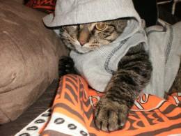 PC (Wearing Twig's old hoodie!)