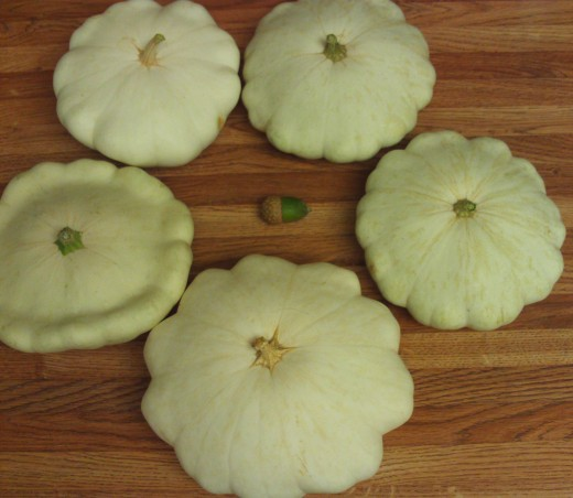 Another picture of the patty pan squash surrounding the acorn.