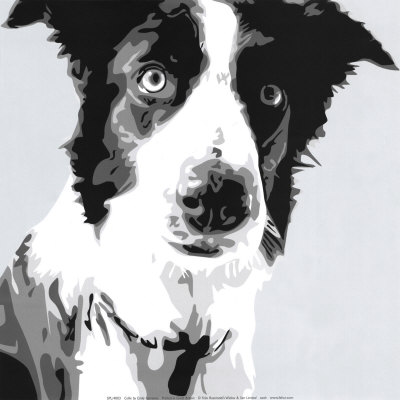 """""""BALLIE"""" WAS A PET COLLIE WHEN I WAS ONLY SEVEN. HE NEVER LIKED FOR STRANGERS TO MESS WITH ME MUCHLESS COME ONTO OUR PROPERTY."""