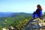 Shenandoah beauty | National Park Service by John F Mitchell