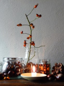 Easy Ways to Bring the AUTUMN SEASON Into Your Home