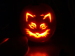 Enelle's Cat-O-Lantern a classic cat-sterpiece - wikihow.com