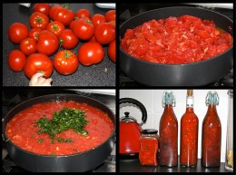 This morning I picked all our ripe tomatoes and turned them into sauce. It's Dad's birthday tomorrow, so I think one these will make a good present for him.