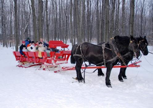 Taking a sleigh ride in the woods at the Black Horse Farms