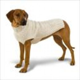 A stylish sweater for your dog