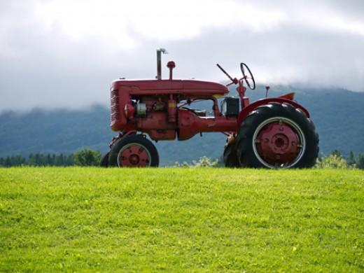 Photo by Edward Fielding - www.edwardfielding.com