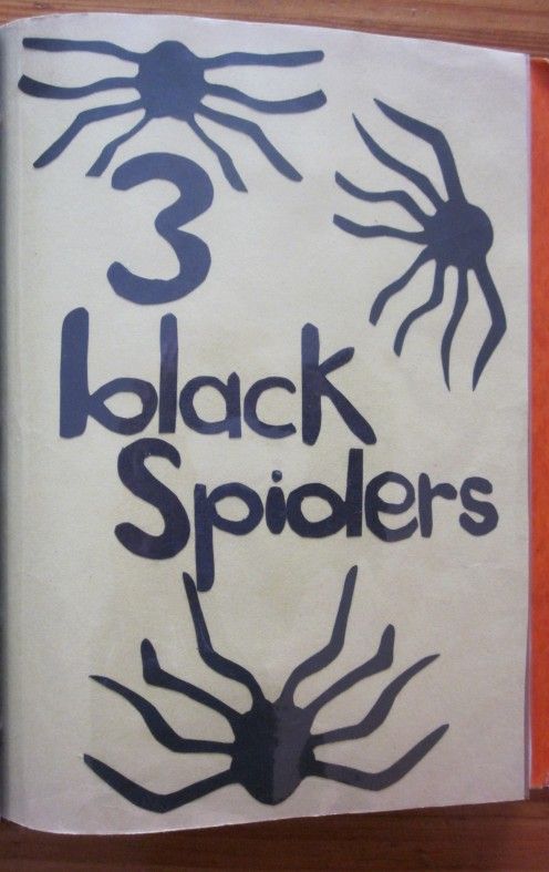3 Black Spiders Spinning Great Big Webs!