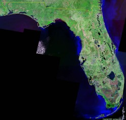 Why is Florida So Poor When It Produces 29% of the Oil in the United States?