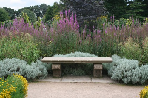 A Beautiful Herb Garden With Bench