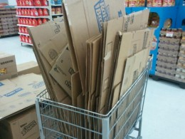 The store employee's practically rolled out the red carpet for us. We could have take ten times as many boxes.