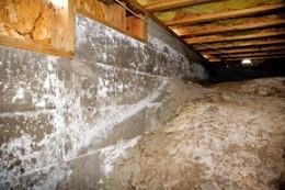crawl space, dirt floor, damp wall | image credit: istockphoto | slobo