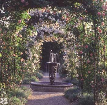 The Rose Garden and Fountain