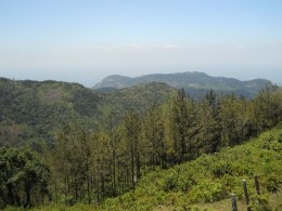 The Yercaud hills