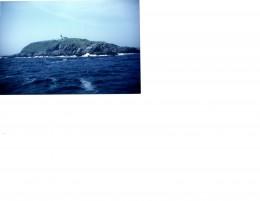 The Rugged Coast of Maine