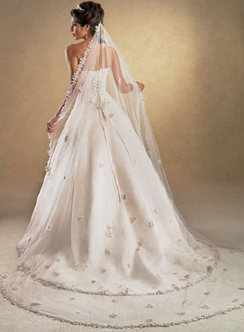 Cathedreal Length Bridal Veil