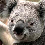 Mhile profile image