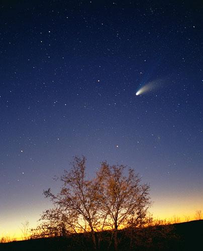 The Comet Hale-Bopp