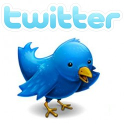 How to Gain More Twitter Followers