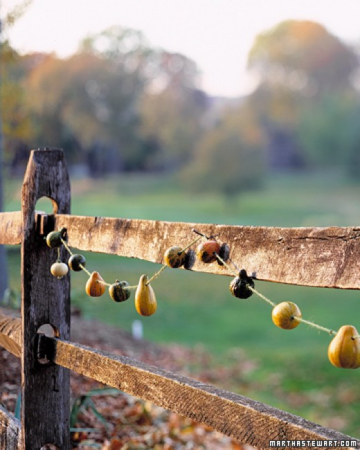 Make it rustic, make it pop--gourd garland does just that.