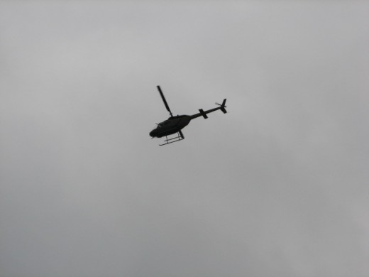 The helicopters circled the area for several days.