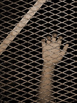 Behind Bars from Rashid Alkhatri Source: flickr.com