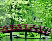 A bridge over a calm stream