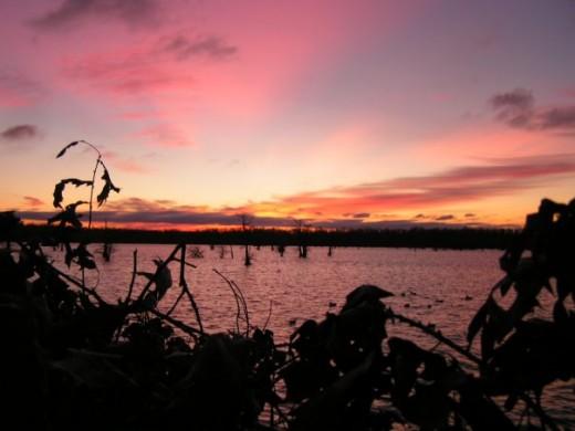 Sundown at Reelfoot