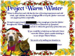 A flyer/ad for their website I did for something called 'Project Warm Winter'. It was a simple design using MS Paint and MS Power Point.