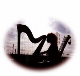 Jill Flomenhoft - harp diva