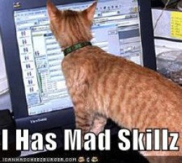 If you don't keep your skills game up, this cat is a better rogue than you.