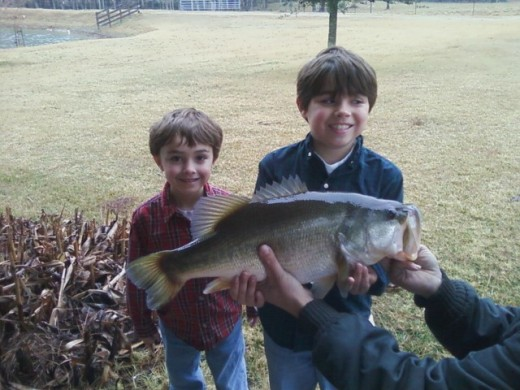 My little super fishermen.